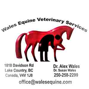 wales equine veterinary services logo
