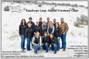 kamloops large animal vet clinic